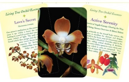 Healing Orchid Cards