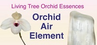 Orchid Air Element