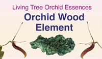 Orchid Wood Element